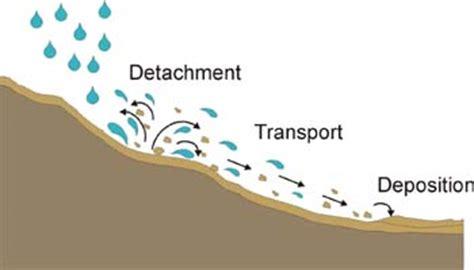 Effects of Soil Erosion - Essay by Jsrajpaul795